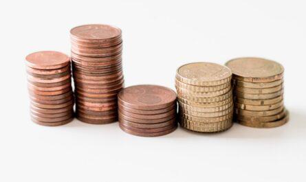 Peníze, které jsou nezbytné pro státní rozpočet.